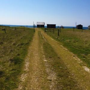 Efter Kämpinge strand blir det fina stigar ett par kilometer.
