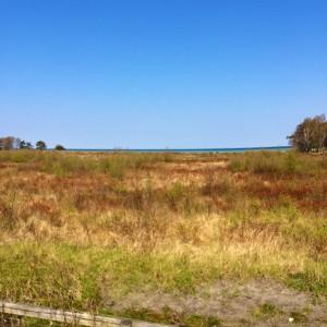 Ni springer längst gamla järnvägen genom naturreservatet Skanörs Ljung.