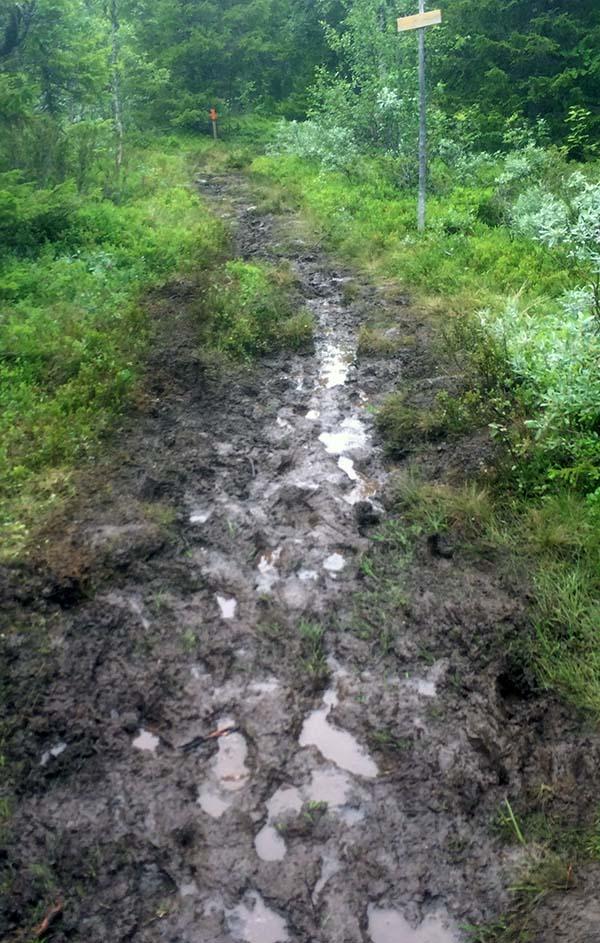 Mer lera! Ser ju nästan ut som om man kan springa ute i kanterna, det kunde man alltså inte!